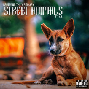 Street Animals - CD Image